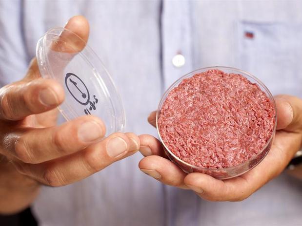 hamburguer-lab