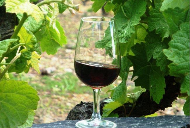 mercado_alimentar_copos vinho