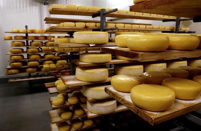 mercado_alimentar_acores_queijo-da-ilha