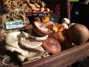 mercado_alimentar_cogumelos2