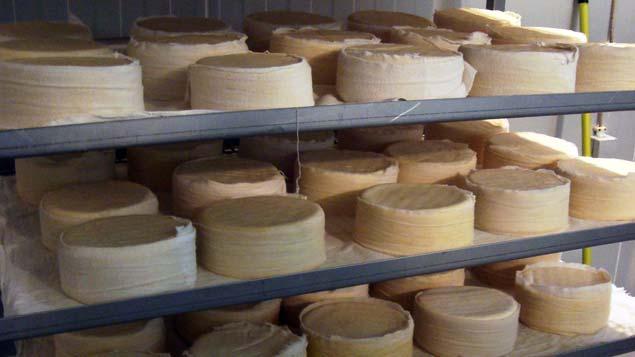 mercado_alimentar_queijaria