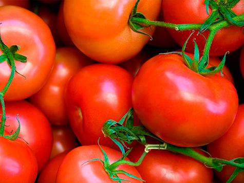 mercado_alimentar_tomate