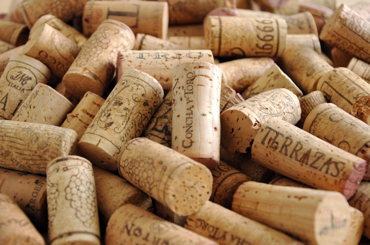 Vinhos do Alentejo mais sustentáveis